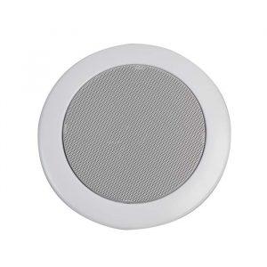 penton RCS6COAX-IP speaker